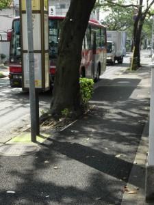 上用賀五丁目西用賀通り、桜並木の歩道の改修