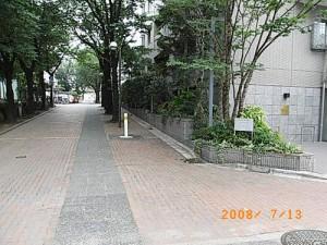 桜丘五丁目桜丘区民センター前桜並木の歩道、 桜の木の伐採に伴う車止め対策
