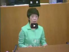 平成27年第3回定例会 9月18日 本会議 一般質問