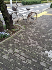 桜並木の根張りに寄る段差を解消