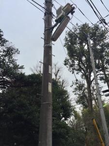 桜丘4丁目街路灯