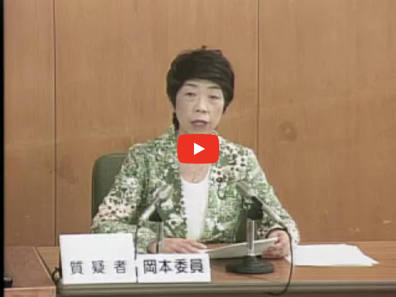 平成29年決算特別委員会 10月4日 企画総務委員会所管質疑