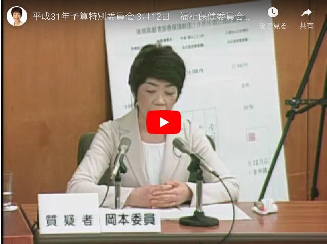 平成31年予算特別委員会 3月12日 福祉保健委員会所管質疑