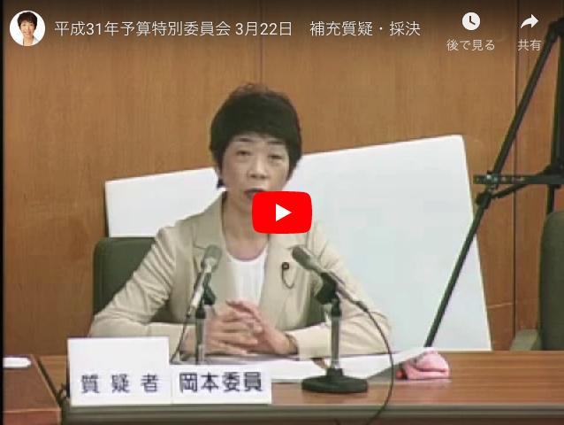 平成31年予算特別委員会 3月22日 補充質疑・採決